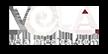 VELA medical logo
